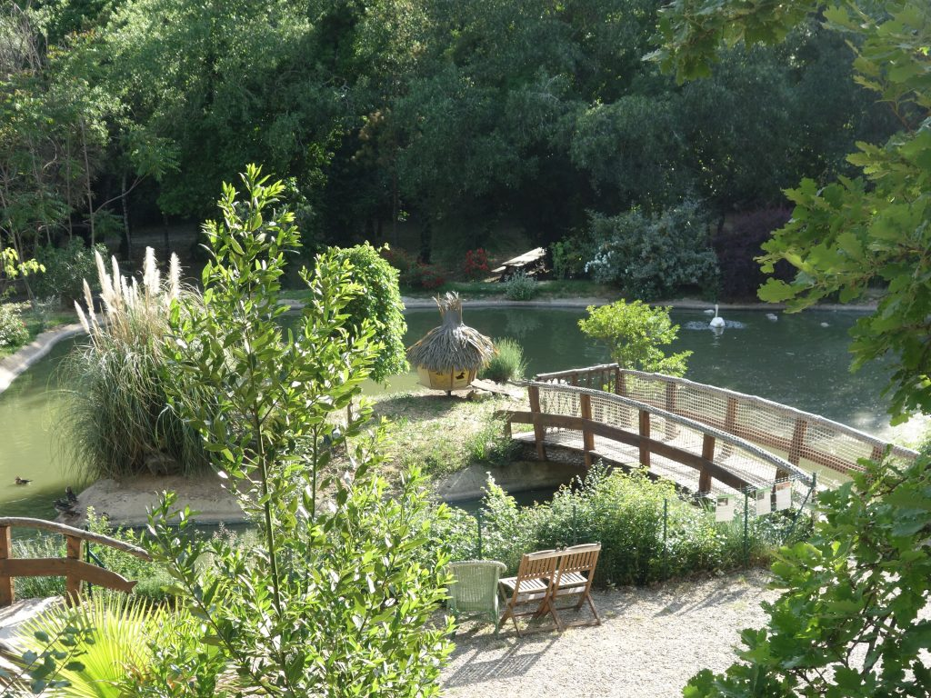 Le magnifique Parc, les canards et cygnes ont droit aussi à leur cabane insolite aux cabanes du Varon à Flayosc